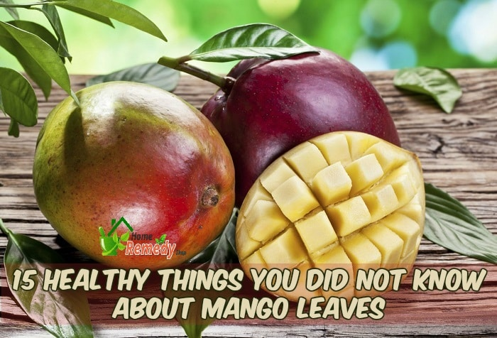 mango leaves and fruit