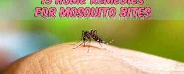 mosquito biting someone with caption home remedies for mosquito bites