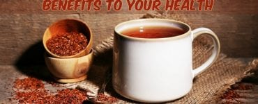 rooibos tea in cup
