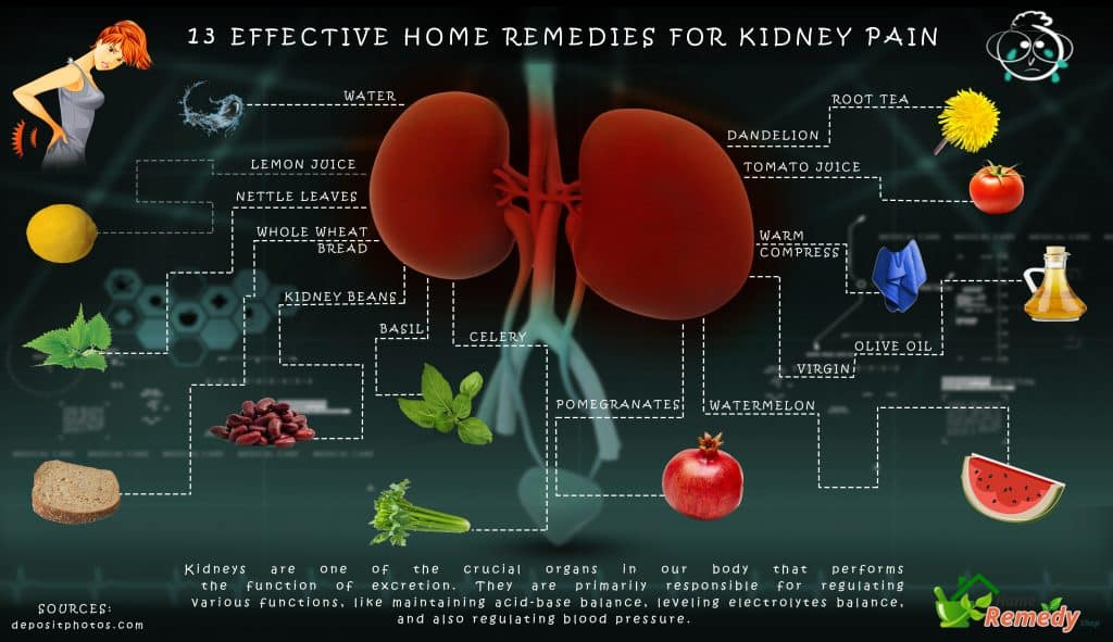 kidneys affects of various liquids Kidney stones, also called urolithiasis, are a common pathology affecting about  10%  the role of dietary habits, including fluid intake, has a great implication in .