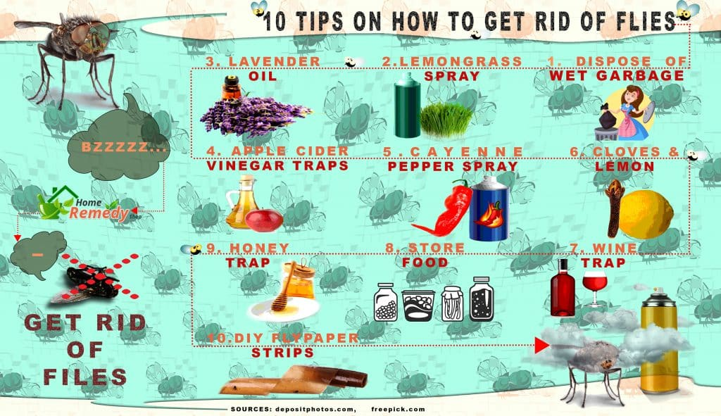 10 tips on how to get rid of flies home remedies. Black Bedroom Furniture Sets. Home Design Ideas
