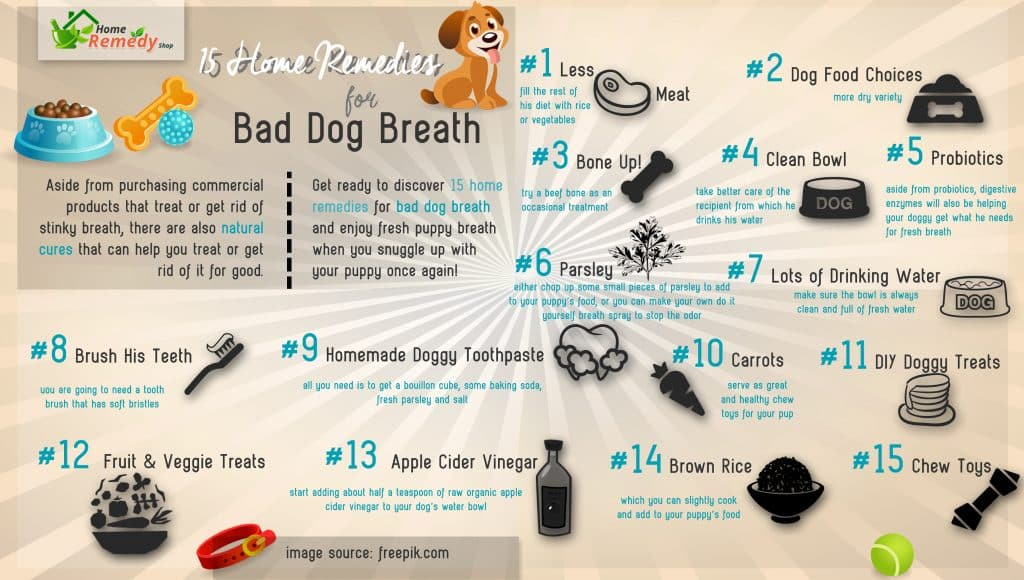 How To Get Rid Of Bad Dog Breath Diy