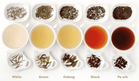 cups of different teas alligned