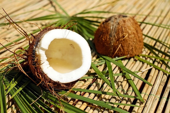 coconut on woods