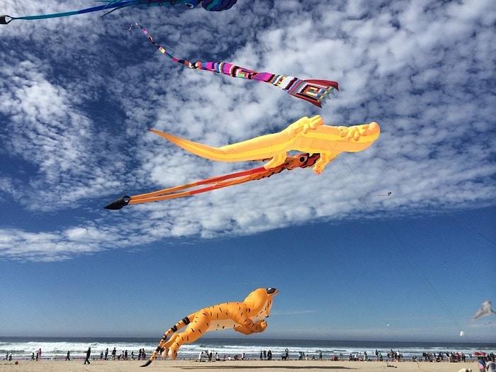 kites on the sky