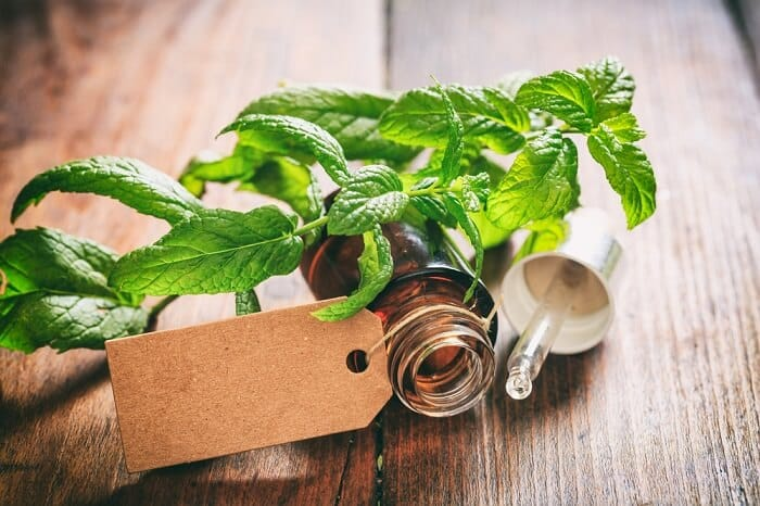 peppermint oil with leaves