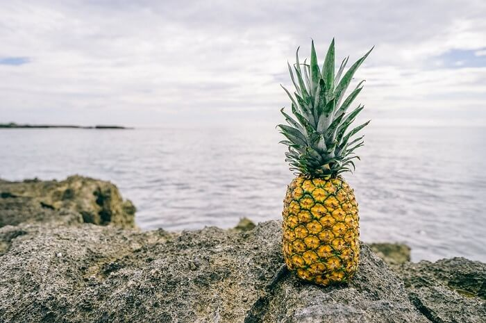 pineapple fruit near sea
