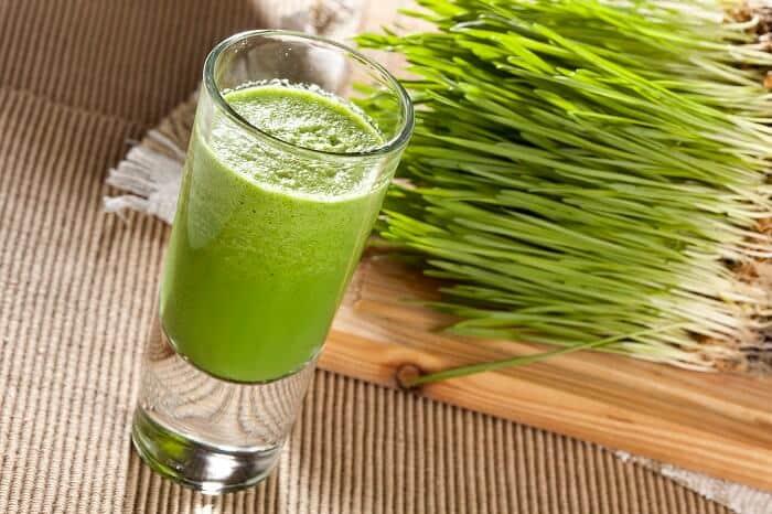 wheat grass in a shot glass