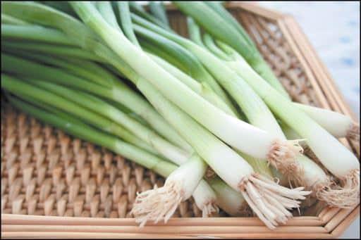 green onions in gardening basket