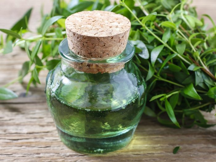 Small Bottle of Myrtle Essential Oil