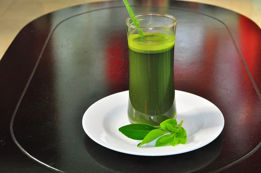 Barley grass drink benefits of barley
