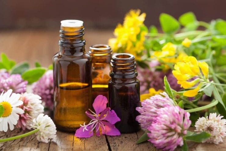 """essential oils and medical flowers herbs"""