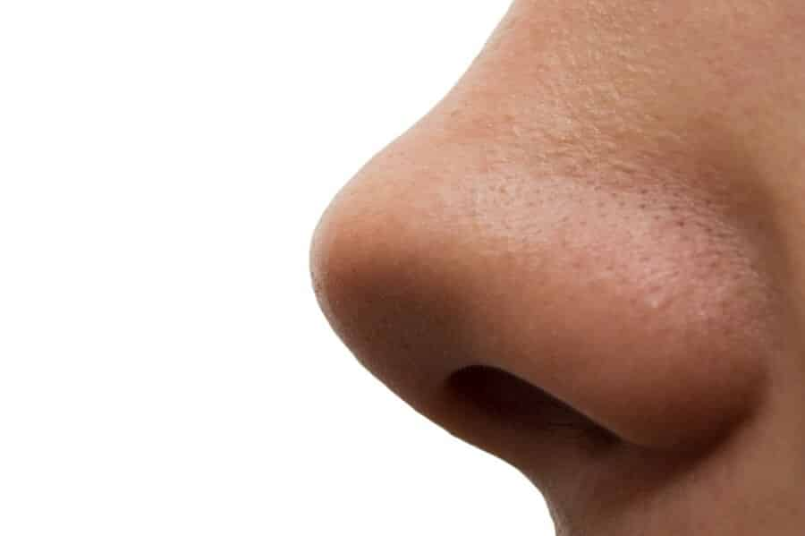 A girl's nose