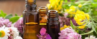best organic essential oils in small bottles