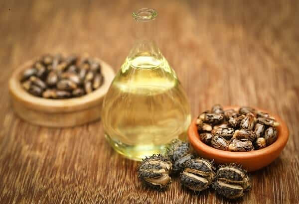 benefits of castor oil and beans