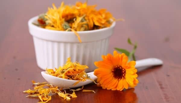 marigold flowers ingredient for homemade bug spray