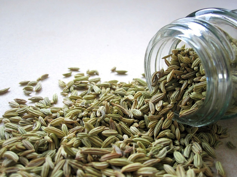 fennel seed, fennel seeds