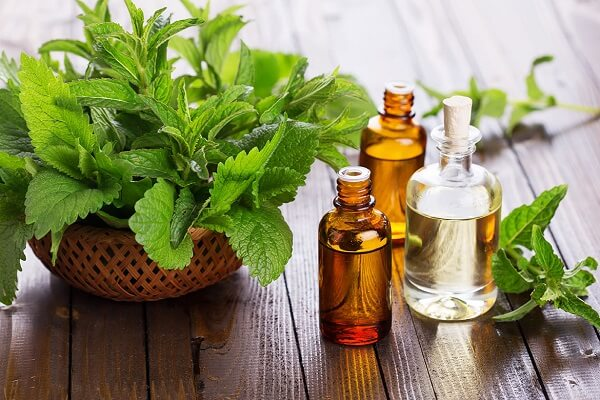 peppermint oil as ingredient for homemade hand sanitizer